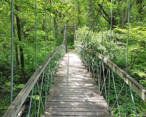 Wilderness park bridge