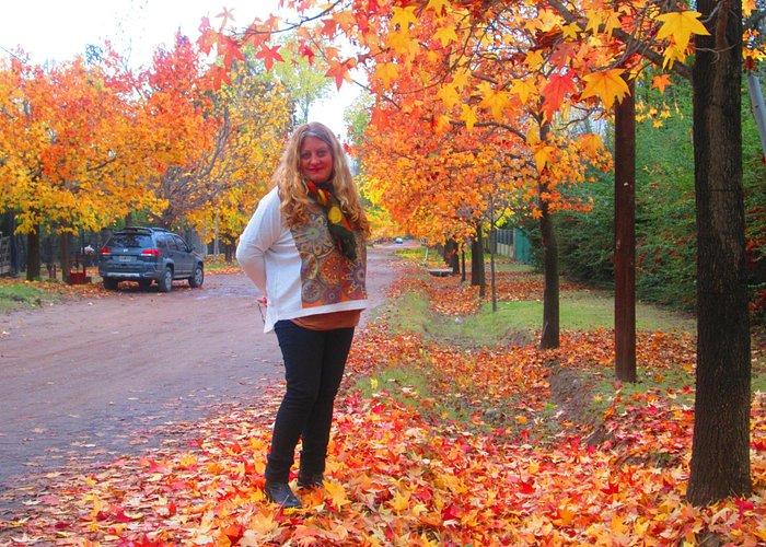 Vistalba , comotodo Mnedoza se tiñe de amarillos, rojos,dorados en el otoños una temporada hermo