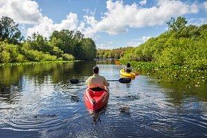 Lake Kissimmee Kayaking
