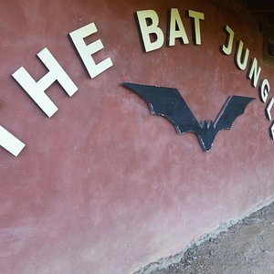 The place to see Bats, 2 or 3 kilometres from town