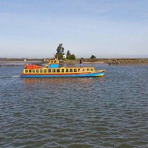 Navegando Pela Ria de Aveiro