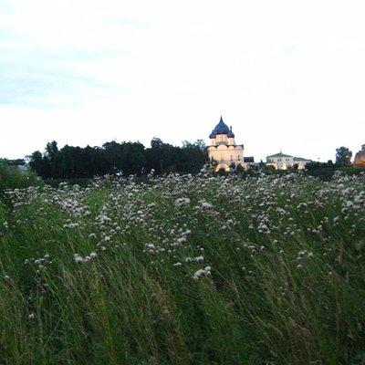 Трава по-пояс