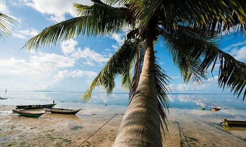 Wakatobi - Southeast Sulawesi