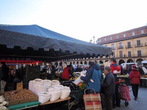 Mercado Plaza Mayor