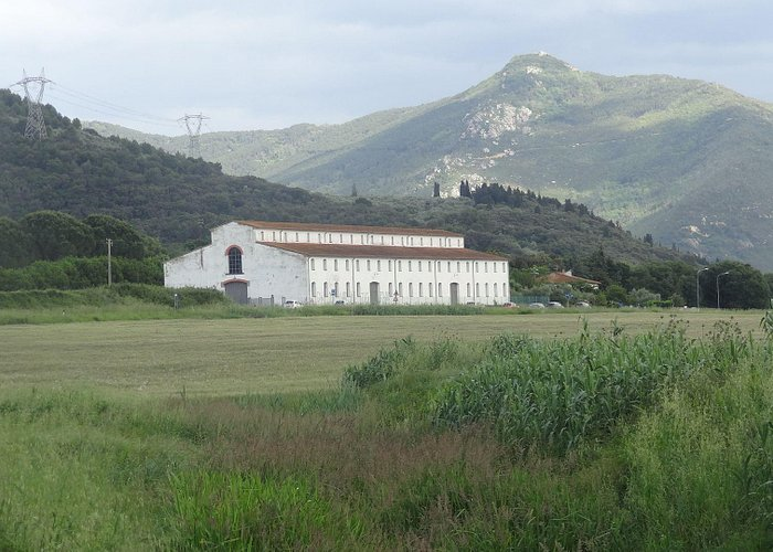 """ANPIL """"Valle delle Fonti"""": on the way back to Asciano, an ancient plant for the tobacco processi"""