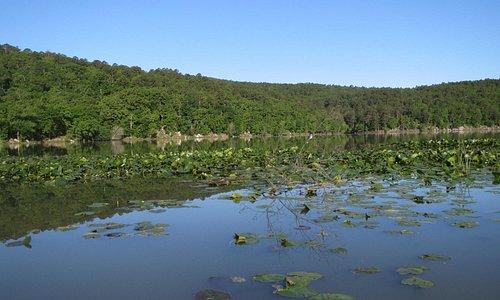 Clayton Lake spring