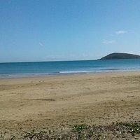 Beach - Dolphin Heads