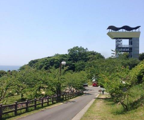 広い農業公園