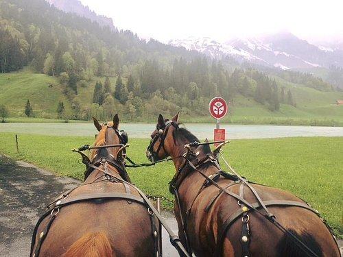 Horse-drawn carriage ride in Engelberg, Switzerland