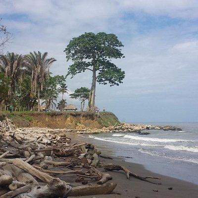 Playa... Volcán de Lodo, Arboletes - Antioquia, Colombia