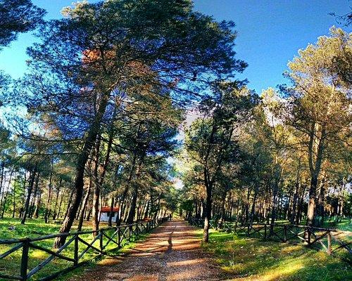 Parco Naturale Selva Reale