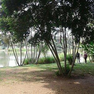 Parque de la Babilla