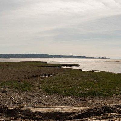 view of mud bay