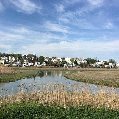 Revere from the north side of the marsh.