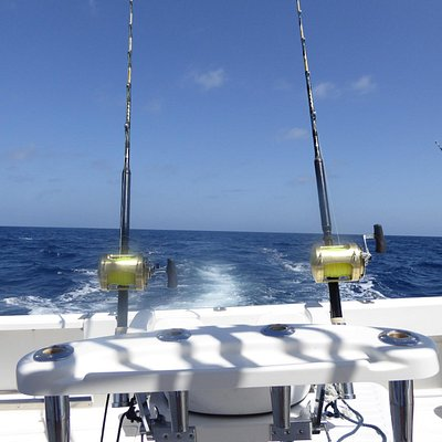 Trolling auf Blue Marlin.