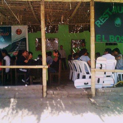 Visita de estudiantes de UNT al Bosque el Cañoncillo