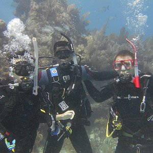 Our very first open water dive! We saw so many amazing animals on our first dive! Even a shark!