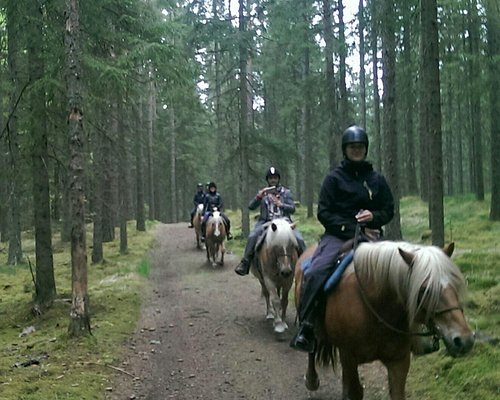 Horseback Trali Rides