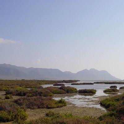 Las Salinas in the Cabo de Gata © Robert Bovington
