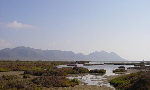Las Salinas in the Cabo de Gata © Robert Bovington