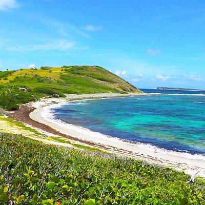Beach on Far Side of Pinel