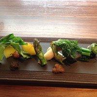 fresh seasonal japanese wild vegetables