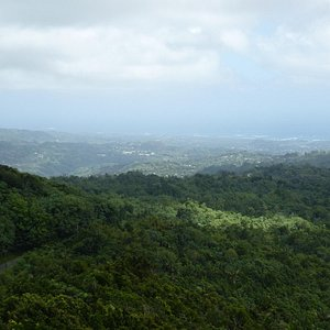 view from Morne LaBaye