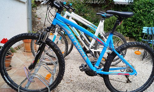 Rent a Mountain bicycles in Istria