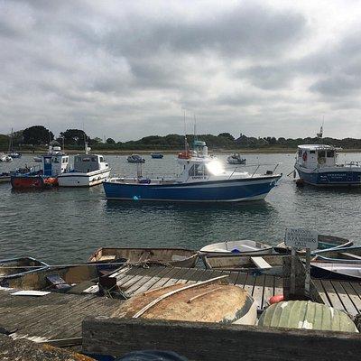 Ray Pitt Sea Fishing