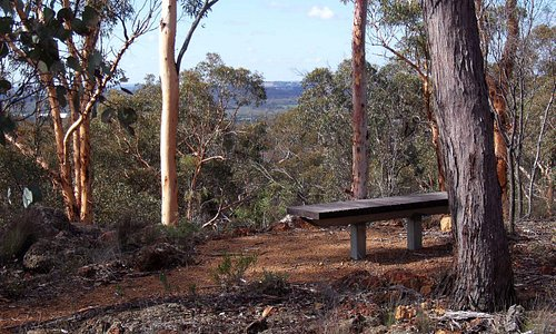 Bench at the lookout