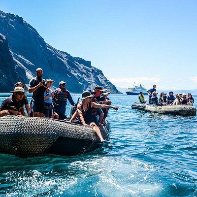 Metropolitan Touring Galapagos Tours