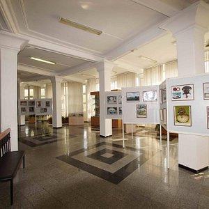 Выставка о гребешках