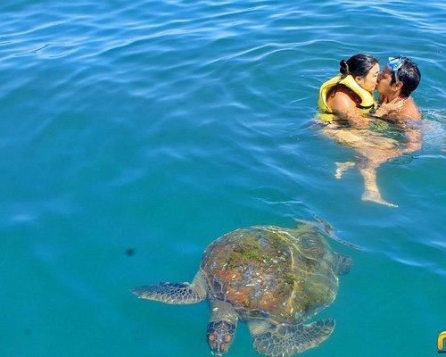 Tour Nadando con las Tortugas