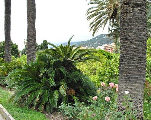 Jardin d'Agrumes du Palais Carnolès