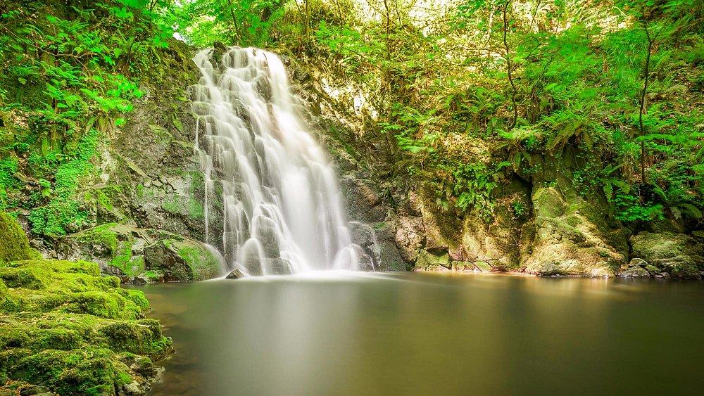 Glenoe Waterfalls, small but memorable.
