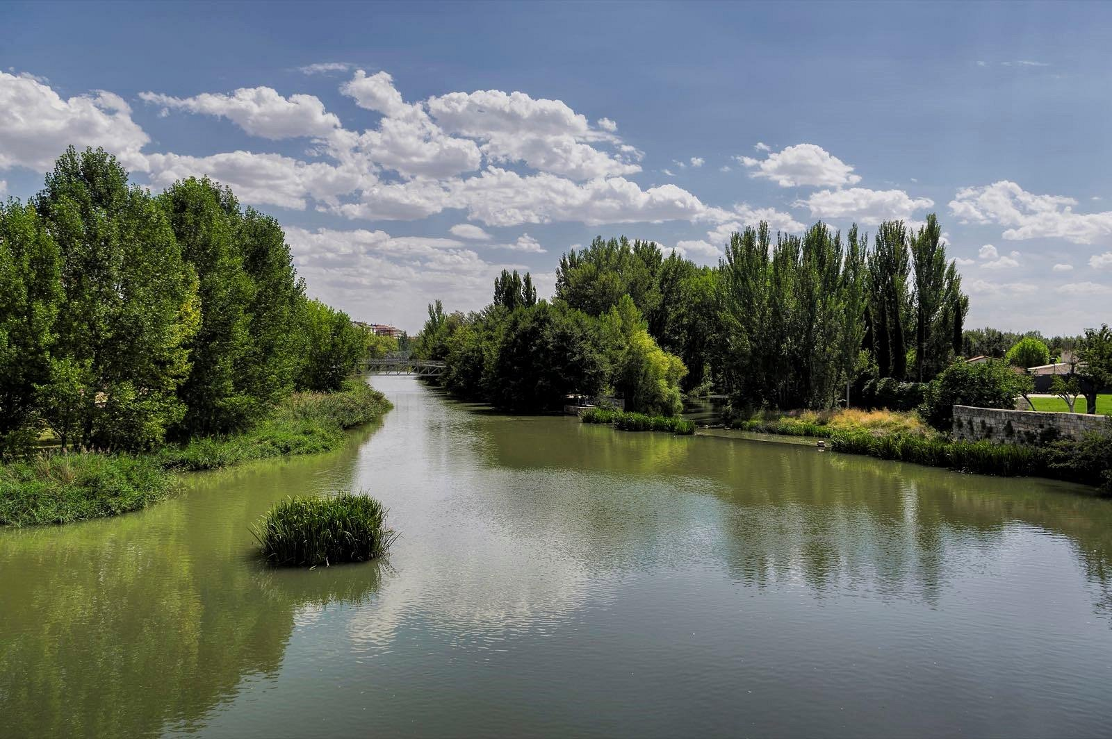 Vista desde el Puente Mayor, Palencia. (Agosto-2015)