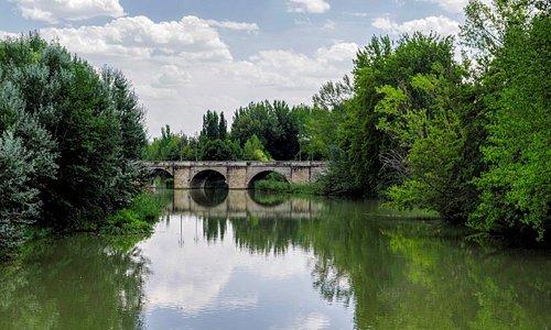 Puente Mayor, Palencia. (Agosto-2015)