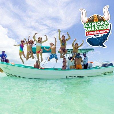 swimm with whale shark experience explora mexico riviera maya with vikingo playa del carmen canc