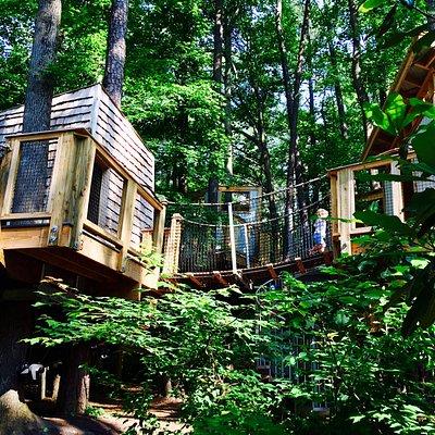 Hideaway Woods Tree House Complex