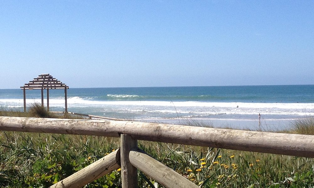 Prevision de Olas playa E l Palmar