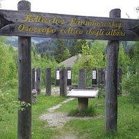 Sentiero nella natura