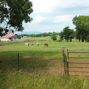 Trails End Ranch