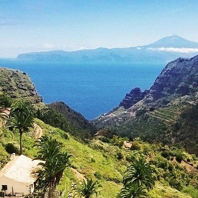 Excursiones guiadas a la isla de La Gomera