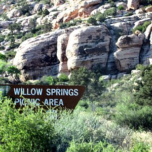 Willow Srpings and Picnic Area, Red Rock Canyon, Las Vegas, NV