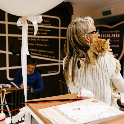Cutest catcafe ever!