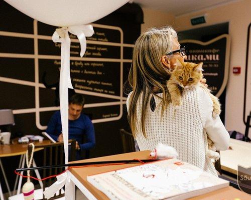 Cutest catcafe ever!
