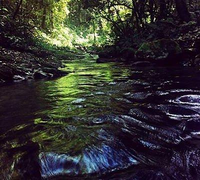Primeira cachoeira, da trilha das cachoeiras