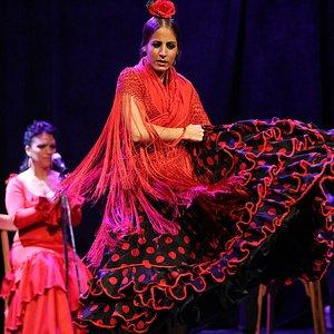Flamenco Barcelona - Show