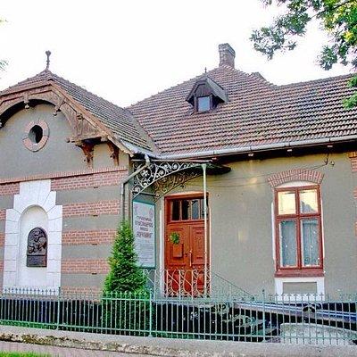 Краеведческий музей в Стрыю