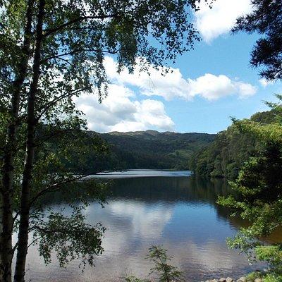 Loch Faskally:  from the eastern shore. July 2014